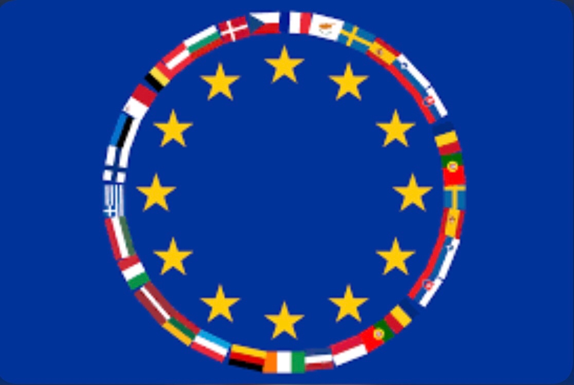 Pro and Cons on the implications of exclusive competence and shared competence for the European Union role in global governance.
